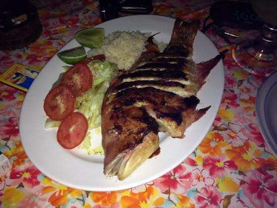 Tita Tulum Hotel Ecologico: Pescado a la plancha or grilled fish