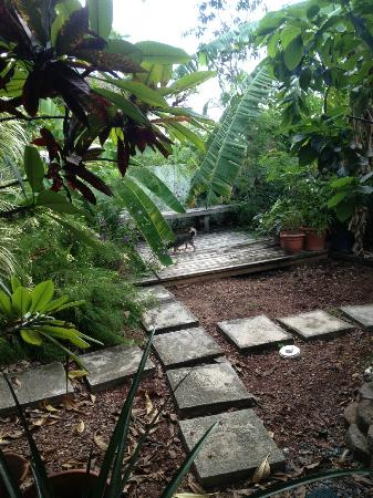 Palmetto Guesthouse: Small raised deck with bench in back garden