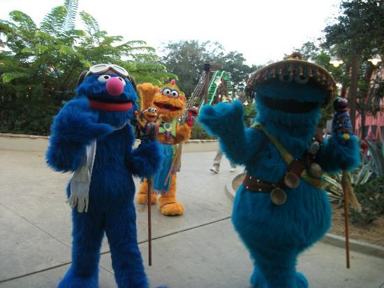 Busch Gardens Tampa: grover cookie monster zoe