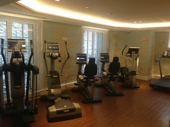 Shangri-La Hotel Paris: Fitness