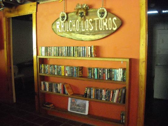 Rancho Los Toros: Library in hostel