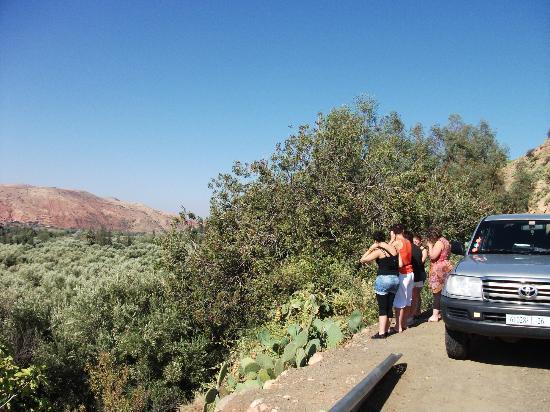 Maroc Par Excellence Day Tours: petite pose photos