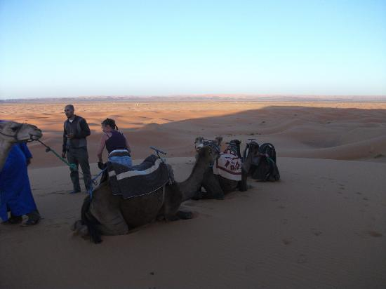 Maroc Par Excellence Day Tours: balade en draumadaires
