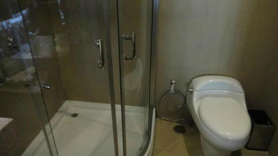 The Cocoon Boutique Hotel: shower and toilet bowl