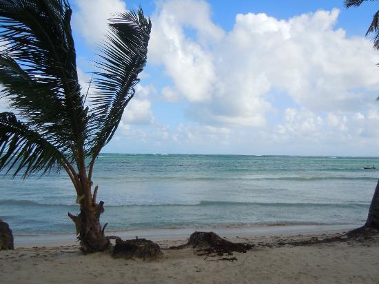 Grand Bahia Principe El Portillo: playa
