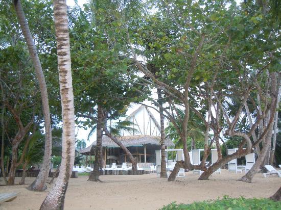 Grand Bahia Principe El Portillo: zona playa