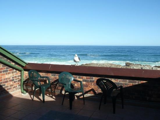 Storms River Mouth Restcamp: Oceanette