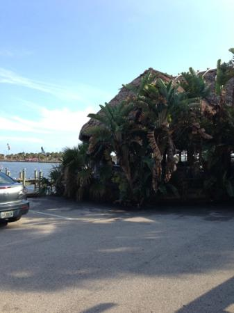 Conchy Joe's Seafood: view from parking lot