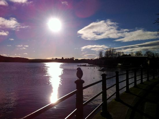 Rochdale, UK: Sun on the lake.
