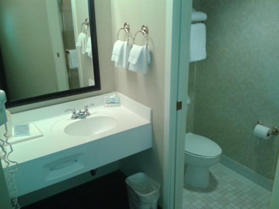Sleep Inn & Suites Lancaster County: bath area