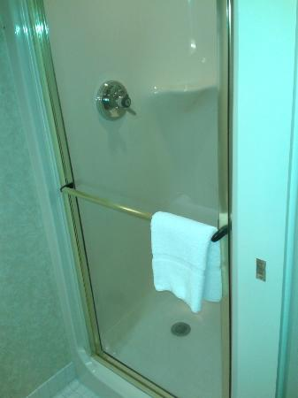 Sleep Inn & Suites Lancaster County : shower only....with no shelf space