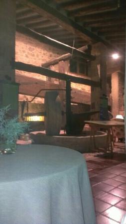 Hotel Moli De L'Hereu : cafetería-museo