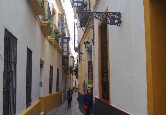 Centro de Interpretacion Juderia de Sevilla : Barrio Santa Cruz
