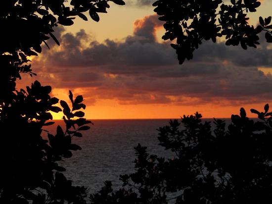Jungle Bay, Dominica: Sunrise from our room!