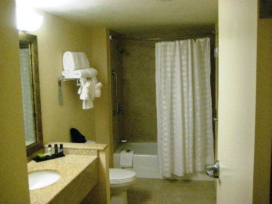 Embassy Suites by Hilton Boston - at Logan Airport: bathroom