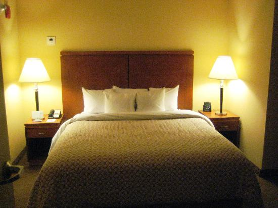 Embassy Suites by Hilton Boston - at Logan Airport: King Bed