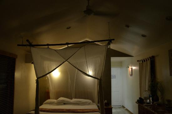 Daintree EcoLodge & Spa: The netted bed