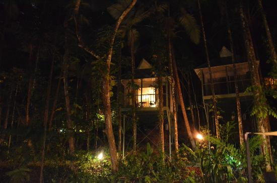 Daintree EcoLodge & Spa: The rooms at night, taken from the restaurant