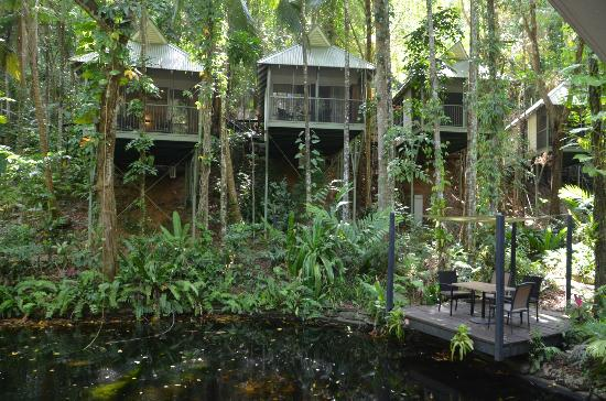 Daintree EcoLodge & Spa: Rooms, pic taken from the restaurant