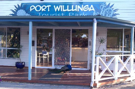 BIG4 Port Willunga Tourist Park: complete with friendly peacocks