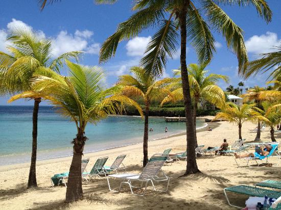 The Buccaneer St Croix : Mermaid Beach