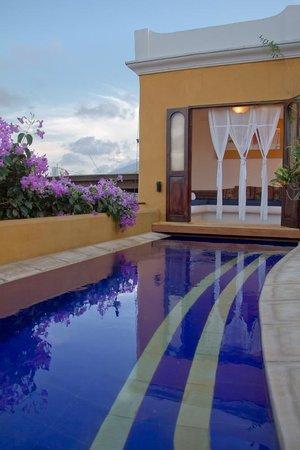 Casa El Carretero: Pool View