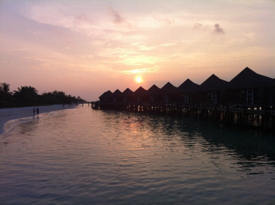 Kuredu Island Resort & Spa: sunset in paradise