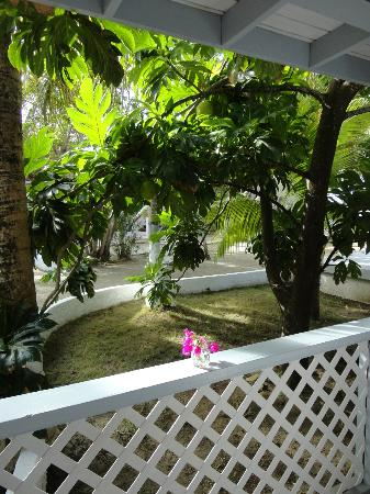 Fort Recovery Beachfront Villa & Suites Hotel: Breadfruit tree near restaurant porch