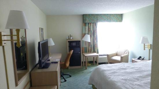 Hampton By Hilton Miami-Coconut Grove/Coral Gables: Room