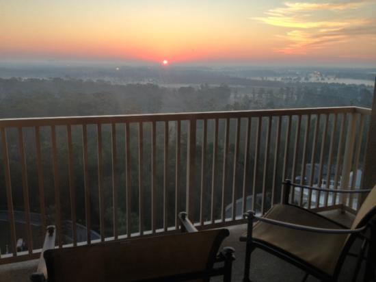 فالدروف أستوريا أورلاندو: View from room 