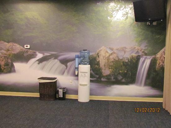 SpringHill Suites by Marriott Pigeon Forge : Mural in workout room