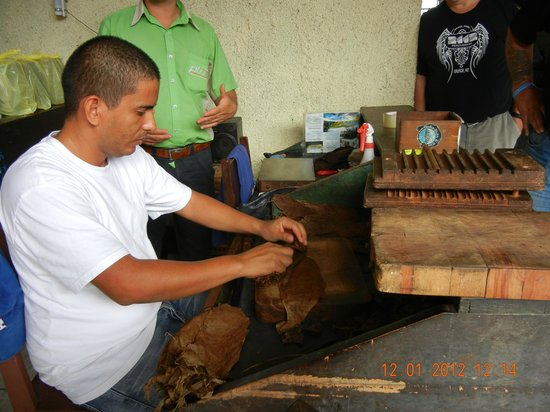 Macua Tours & Travel - Day Tours:                                     Tobacco Rolling