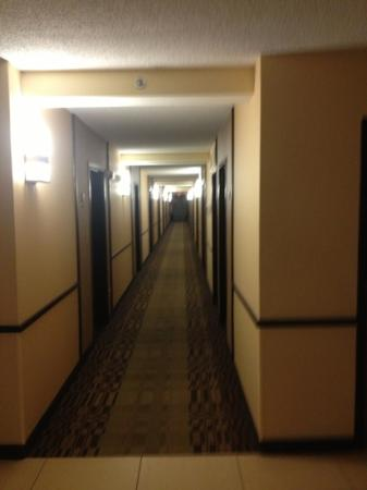 Hyatt Place Perimeter Center: 6th floor corridor