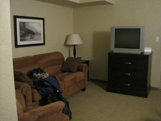 Country Inn & Suites by Radisson, Niagara Falls, ON: Living room