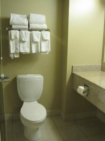 Country Inn & Suites By Carlson, Niagara Falls, ON: bathroom
