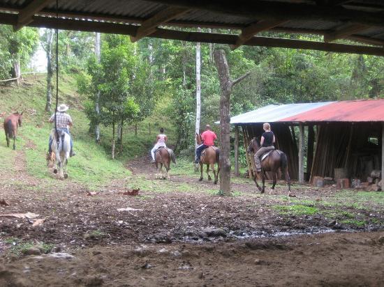 La Carolina Lodge: Horseback Riding w/ Alejandro