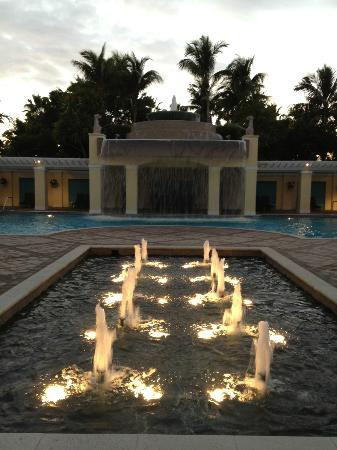 Hyatt Regency Coconut Point Resort & Spa : Waterfall Pool