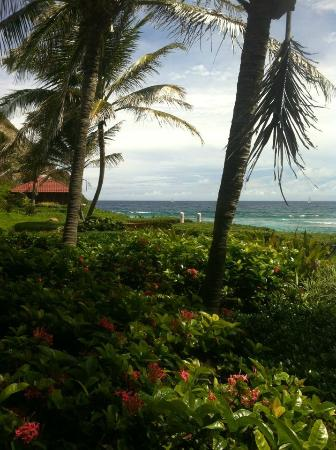 Peter Island Resort and Spa: by the spa