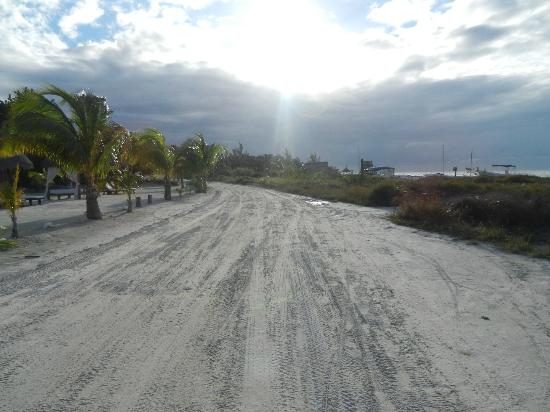 Xaloc Resort: Camino entre el hotel y la playa. Hermoso!