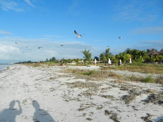 Xaloc Resort: Playa rumbo al centro 