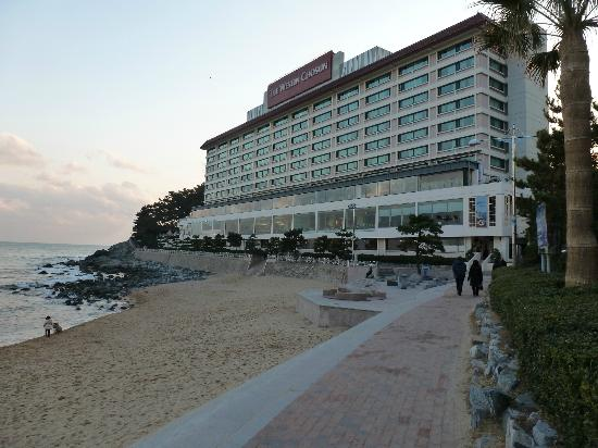 The Westin Chosun Busan: amazing location, beautiful views