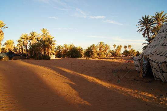 Dar Sidi Bounou: Garden