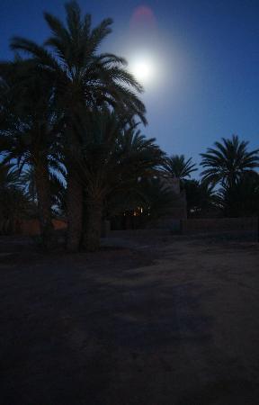 Dar Sidi Bounou: Garden in moonlight