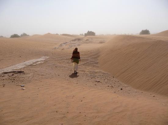 Dar Sidi Bounou: Desert out the back of the garden