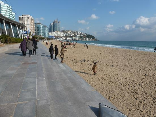 Haeundae Beach : up close