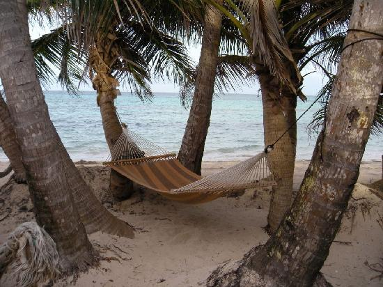 Little Corn Beach and Bungalow : one of the many hammocks at LCBB where you can spend the day sleeping or reading