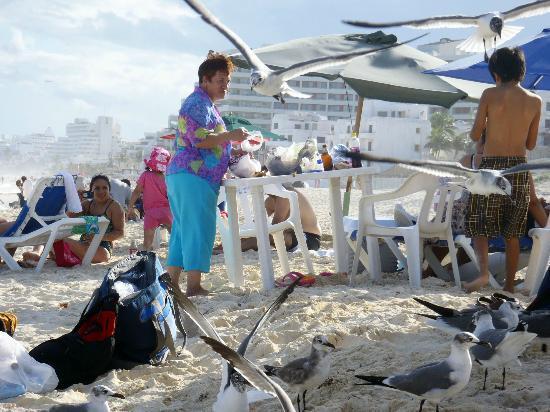 Playa Delfines: Families