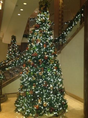 Fairmont Chicago Millennium Park: Christmas display