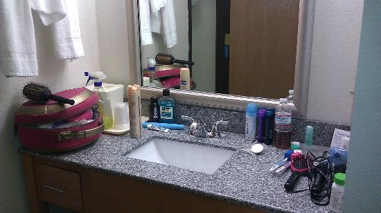 Comfort Inn Birch Run: sink area