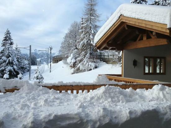 Hotel des Alpes by Bruno Kernen: Vue depuis la salle à manger